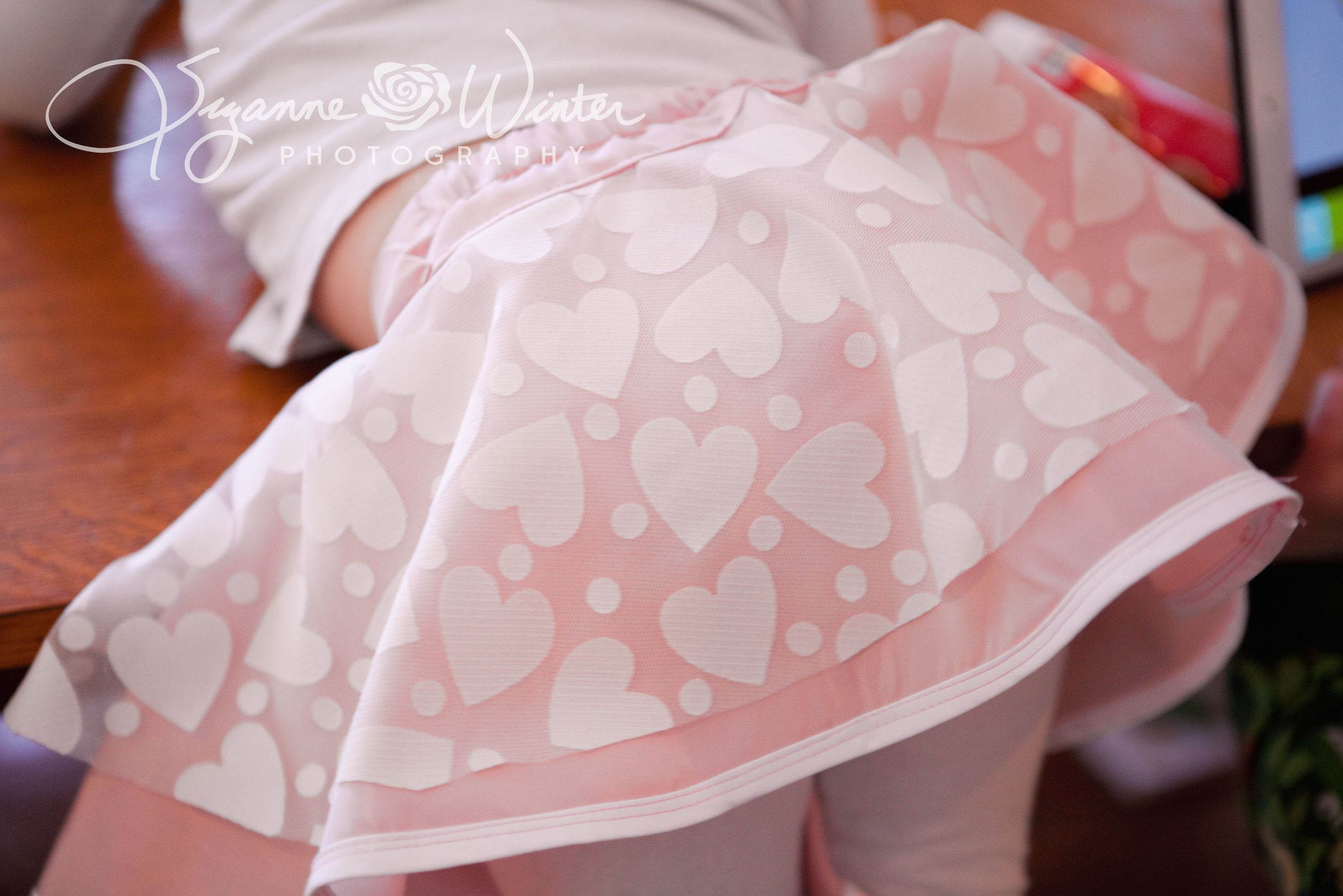 valentines skirt-1009a.jpg