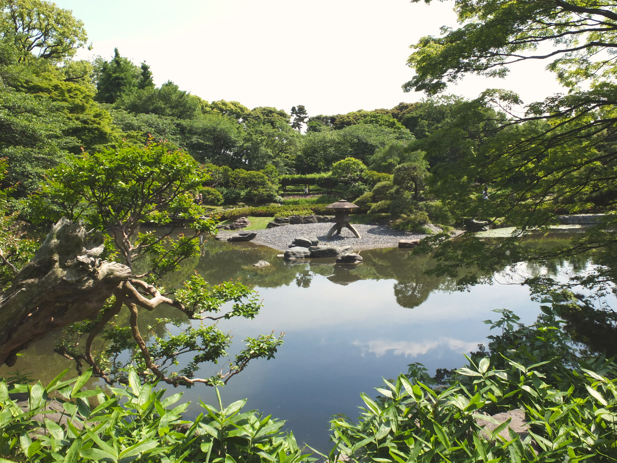 A peaceful garden nestled in the heart of Tokyo.