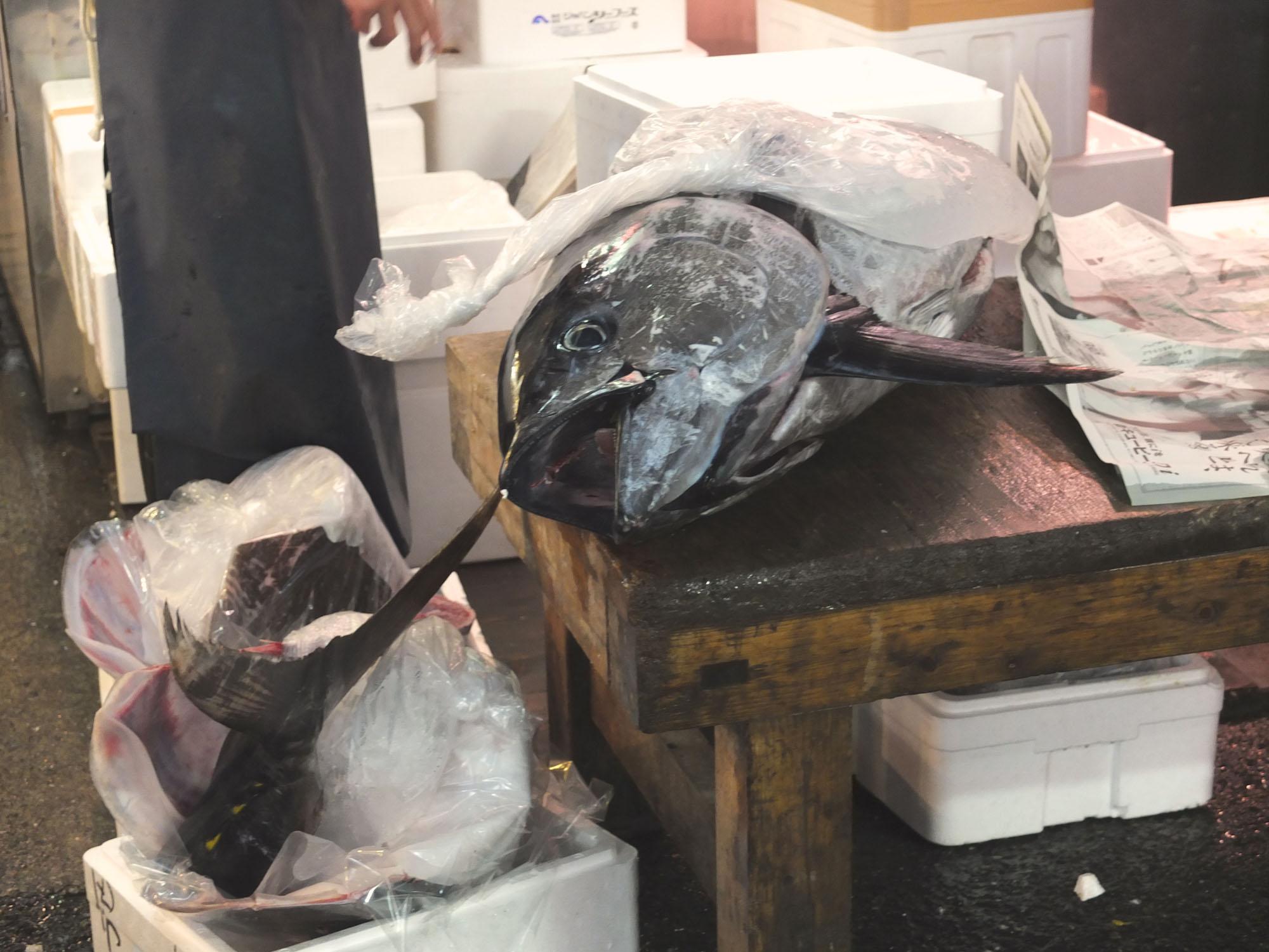 Fresh Tuna is the star here in Tsukiji