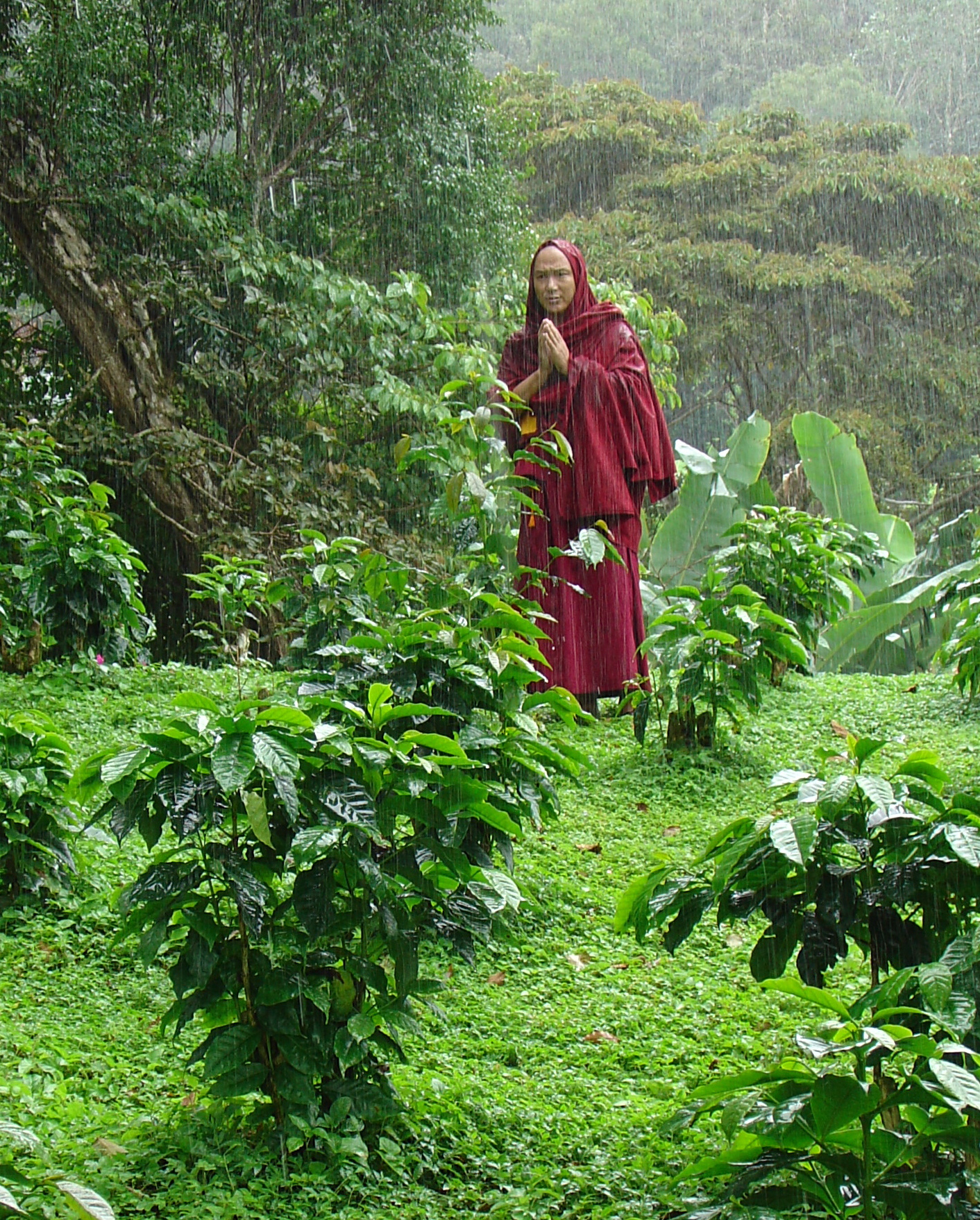 Monk blessing coffee