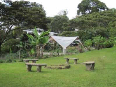 House-greenhouse-300x225.jpg
