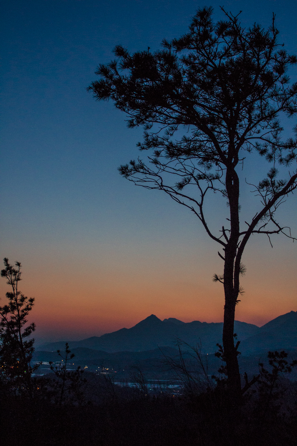 From the top of the mountain inside Daenamugol during the blue hour. The lights of Damyang peek through the mists.