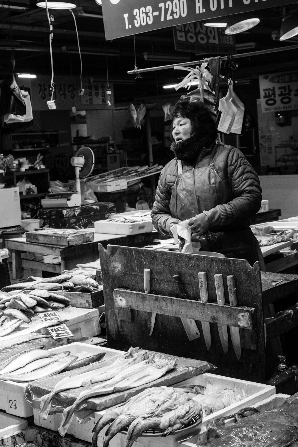You do not want to mess with the fish vendors in Yang-dong market.