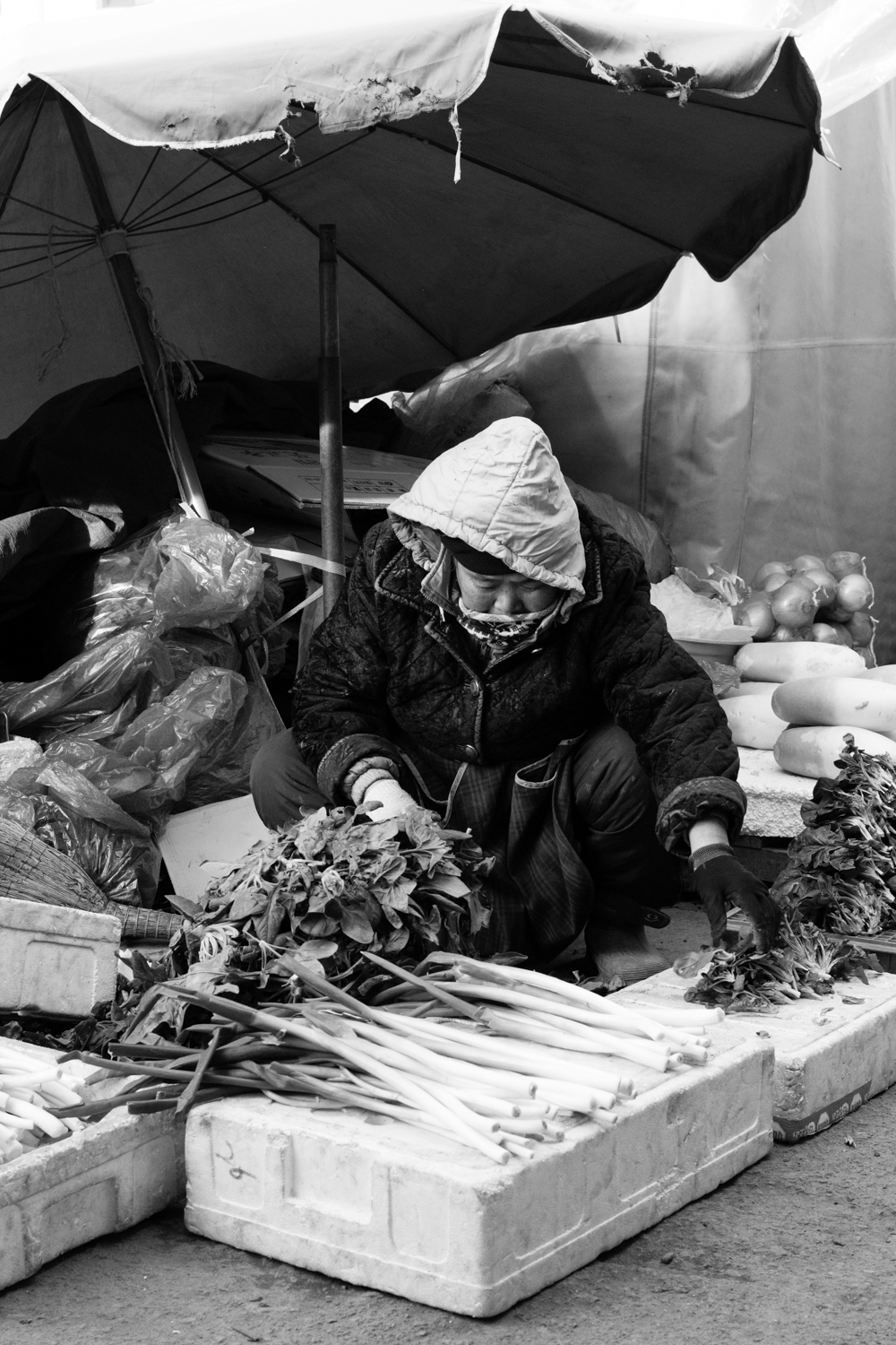 Another of the poorer merchants, these vendors are unable to afford the price to rent a stall within the market proper, and so are relegated to the outskirts where they use large umbrellas to protect themselves and their produce from the elements. In the background, you can see the produce on offer from a slightly more well-to-do merchant.