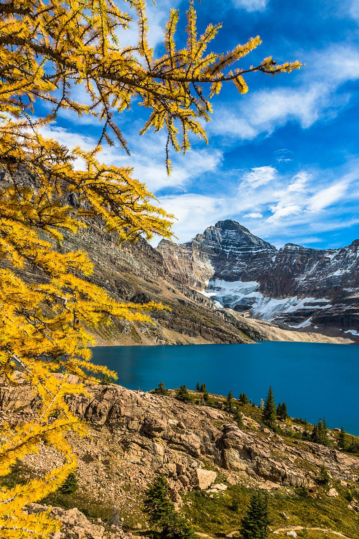 Lake McArthur , Yoho National Park, BC