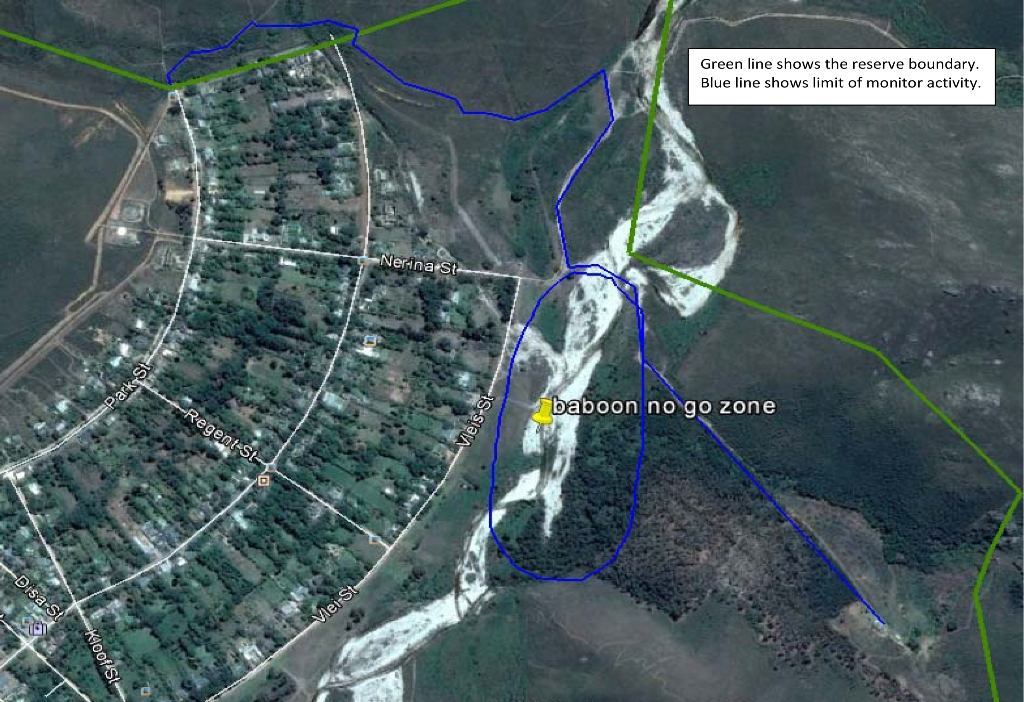 Baboon Buffer Zone 2