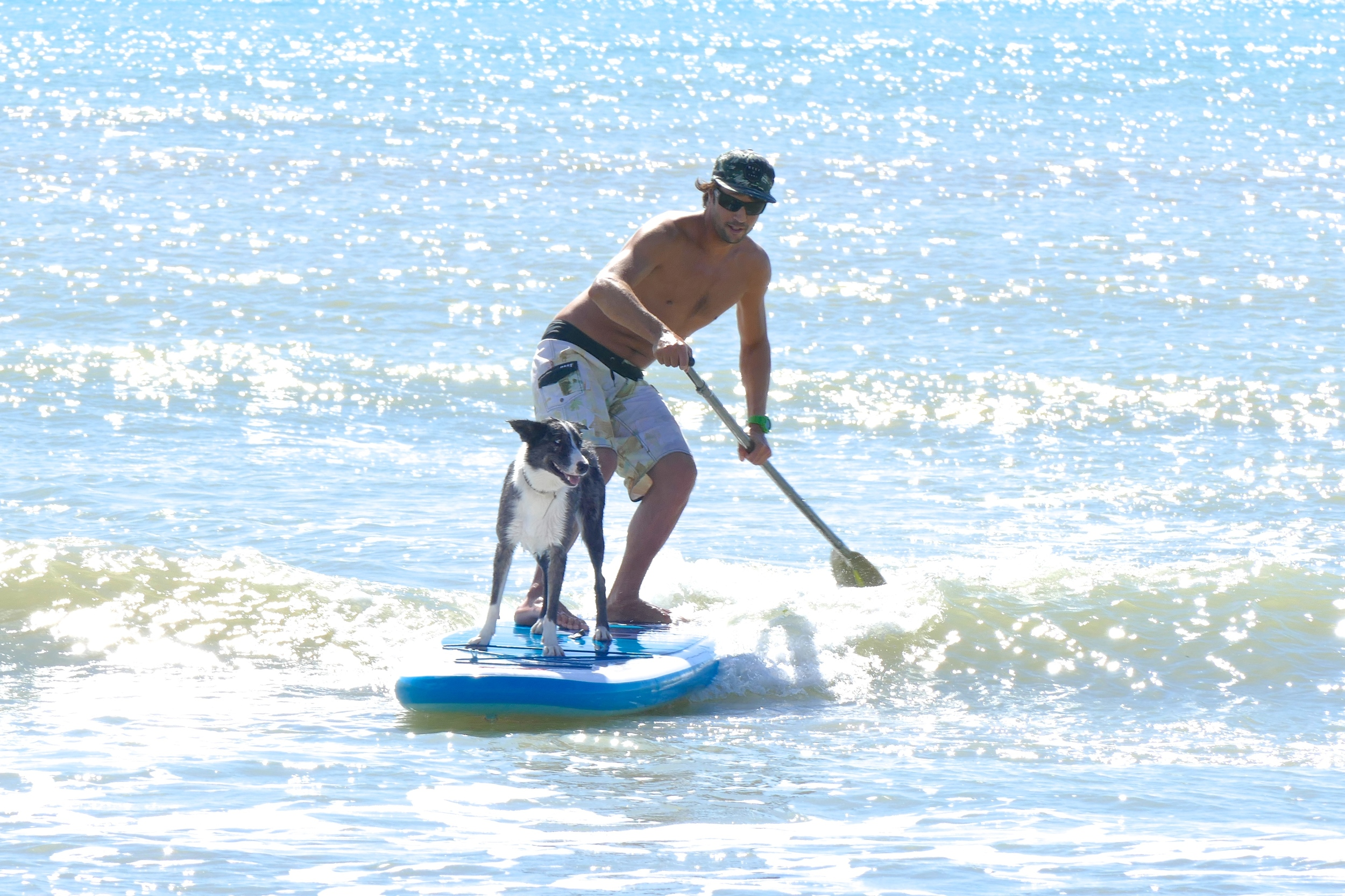 ICE le SUP Surfer