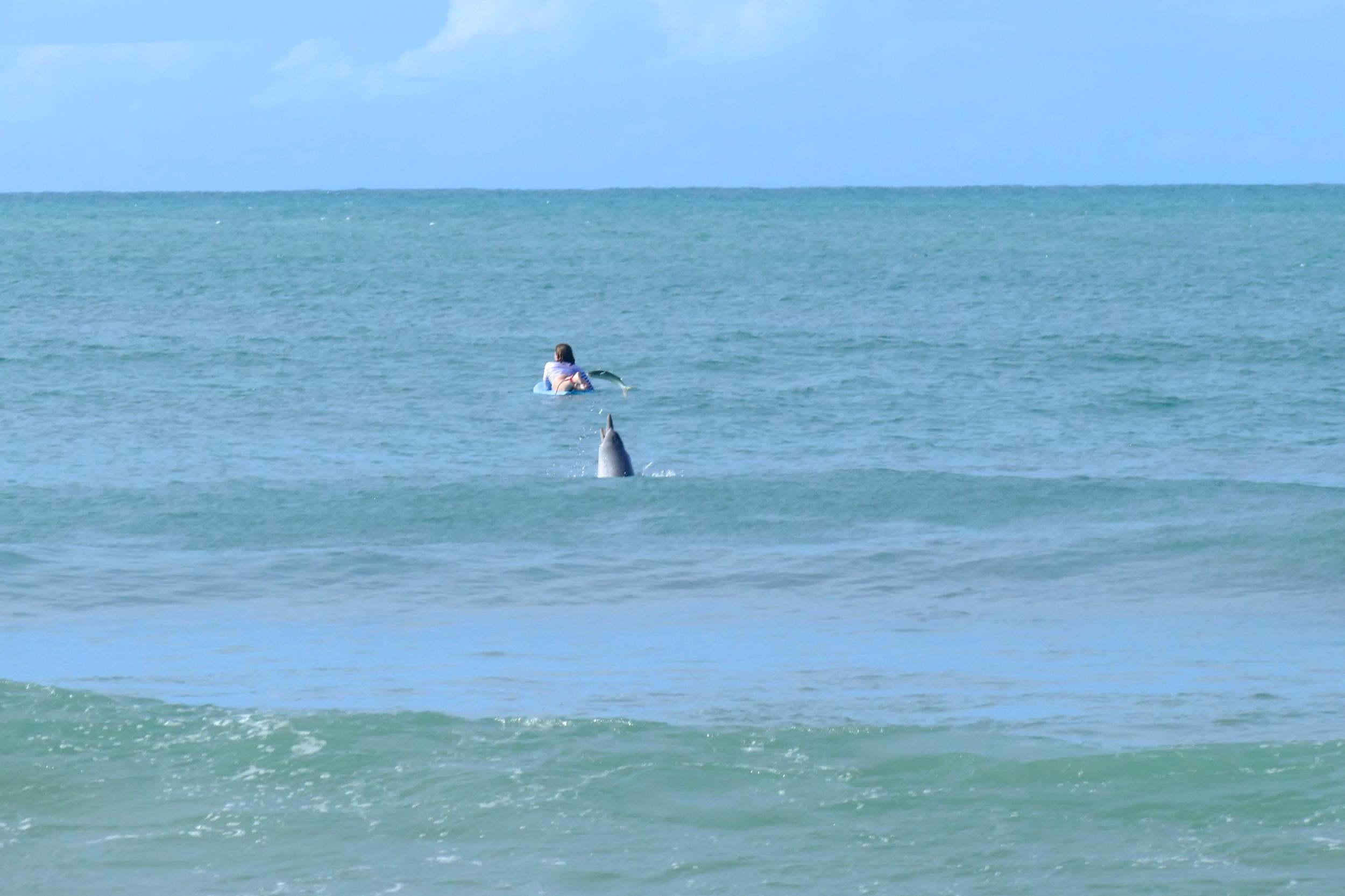 En attendant les vagues -Petit clin d'oeil aux lycras marinières SurfPistols ;)