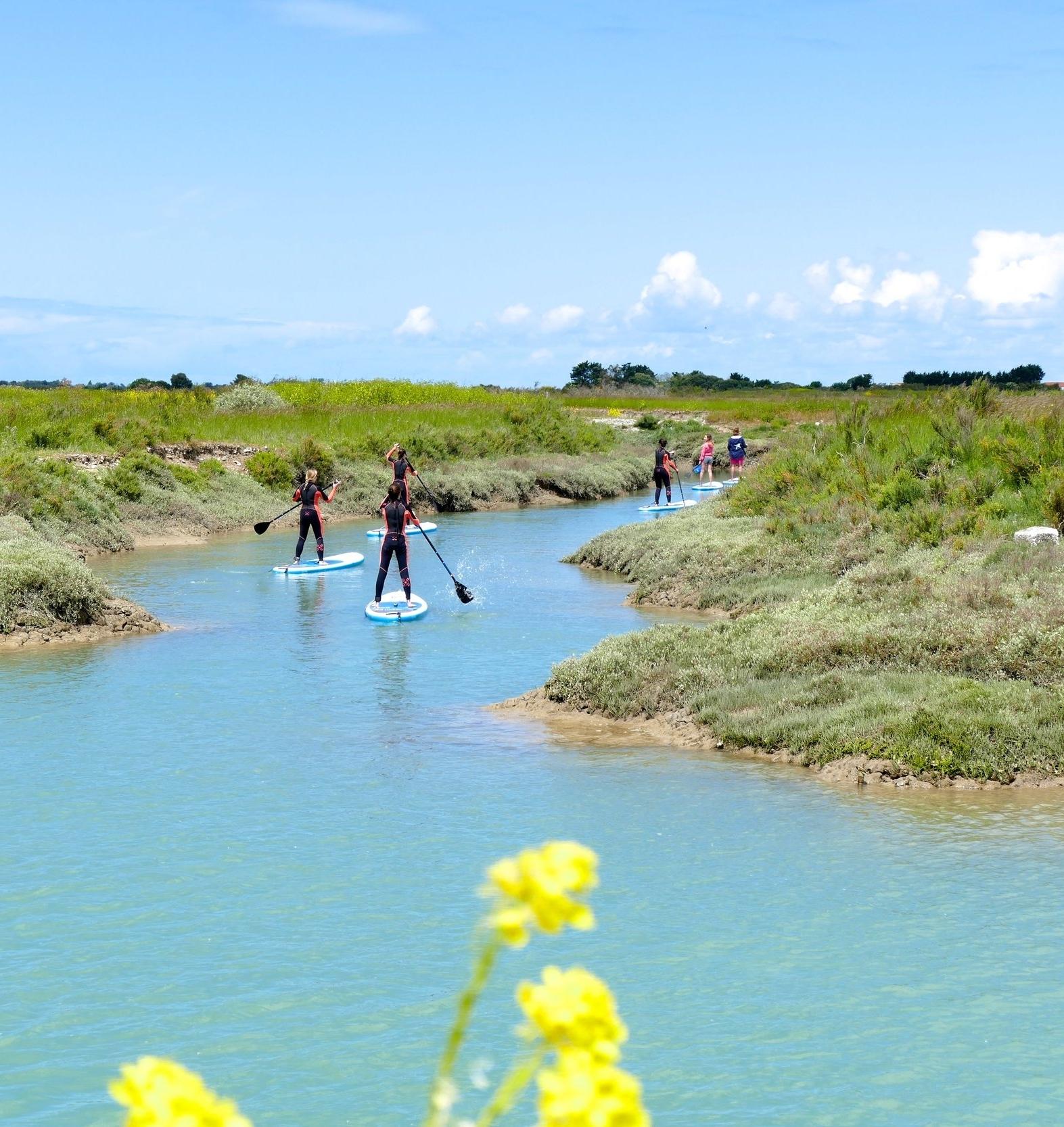 SUP rando du mois de mai sur l'île de Ré.