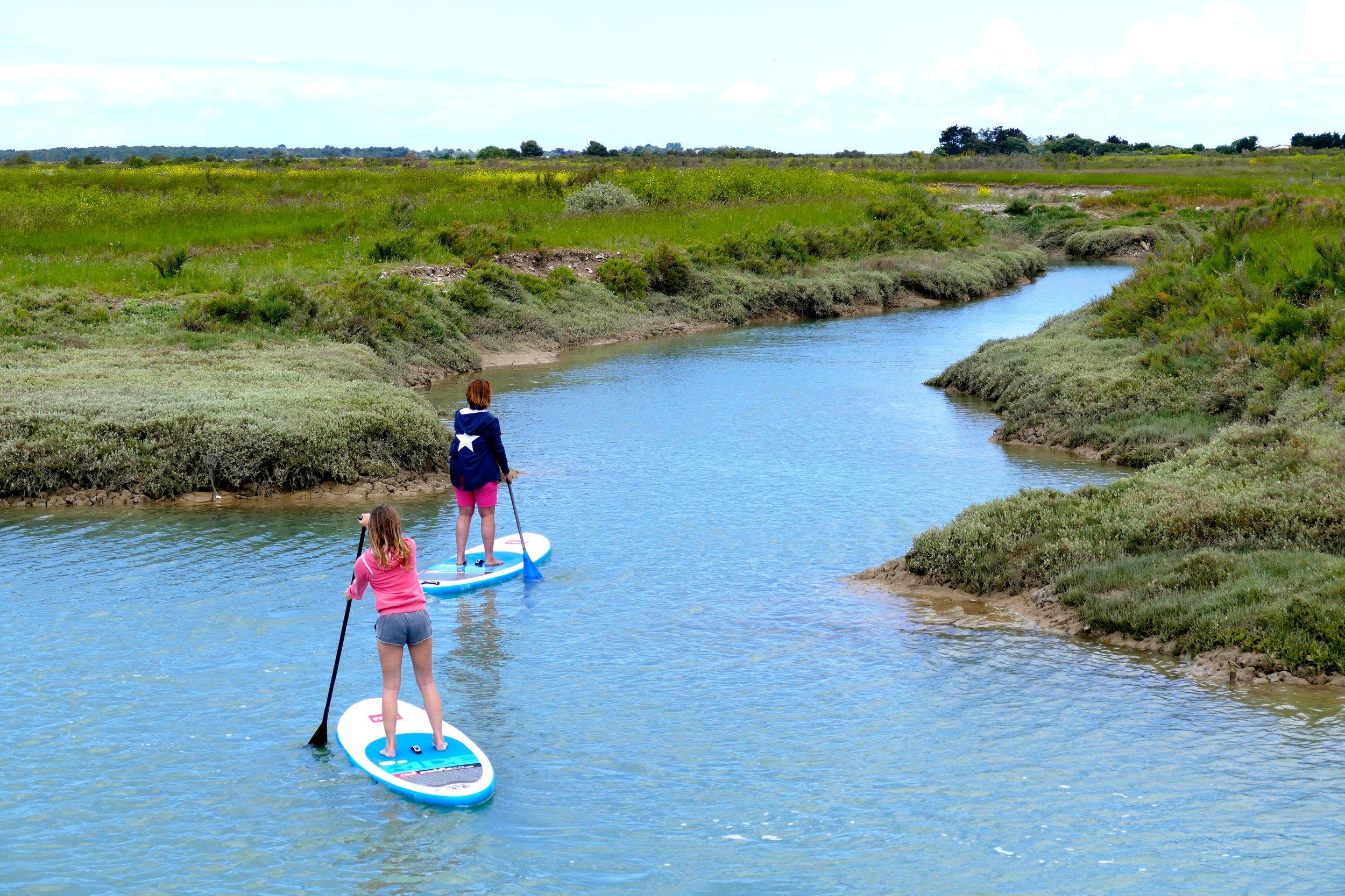 Balade de 2h en Stand Up Paddle dans les marais de l'Ile de Ré