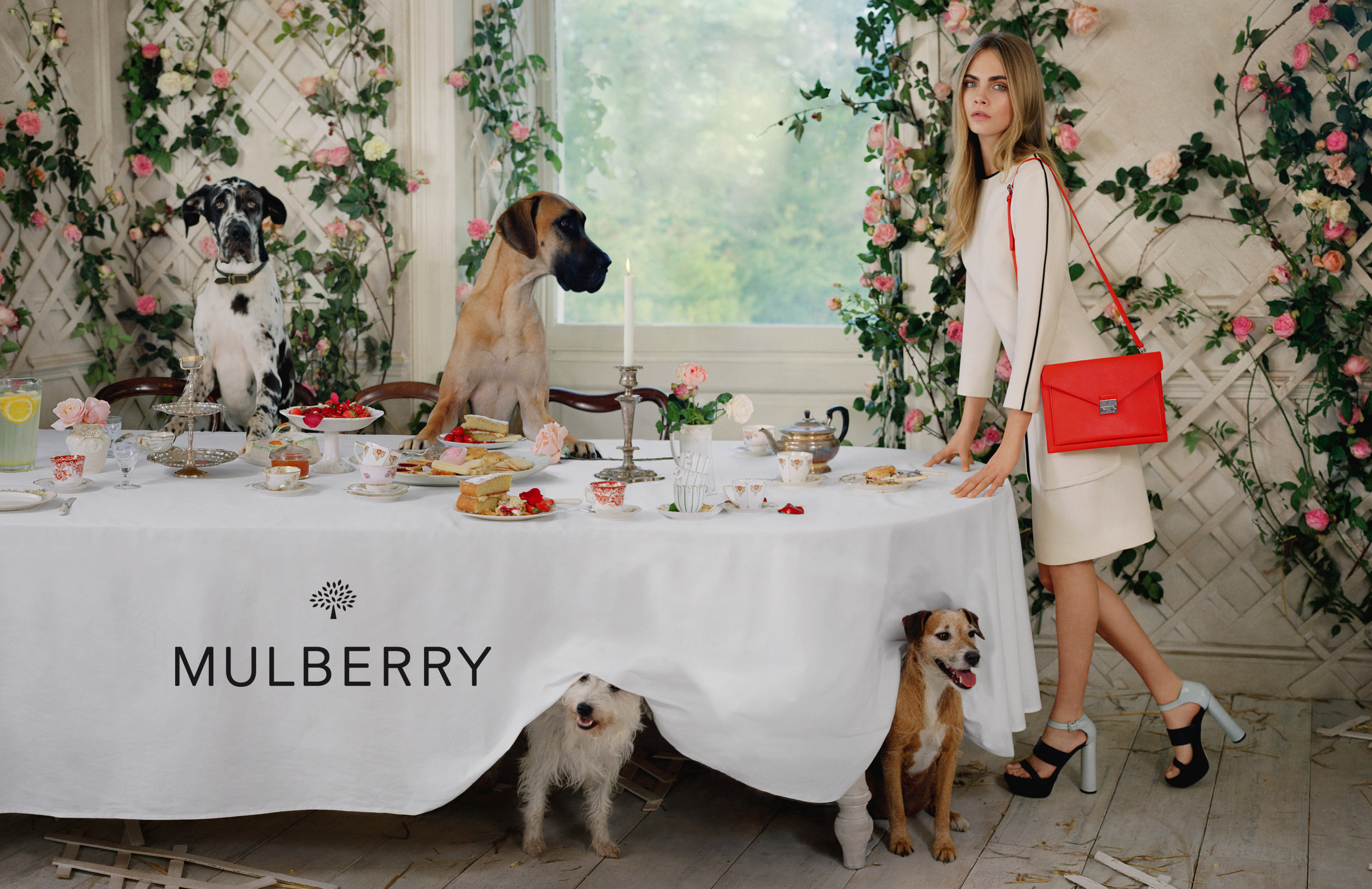 mulberry-authorised-retailers-robinsons.jpg