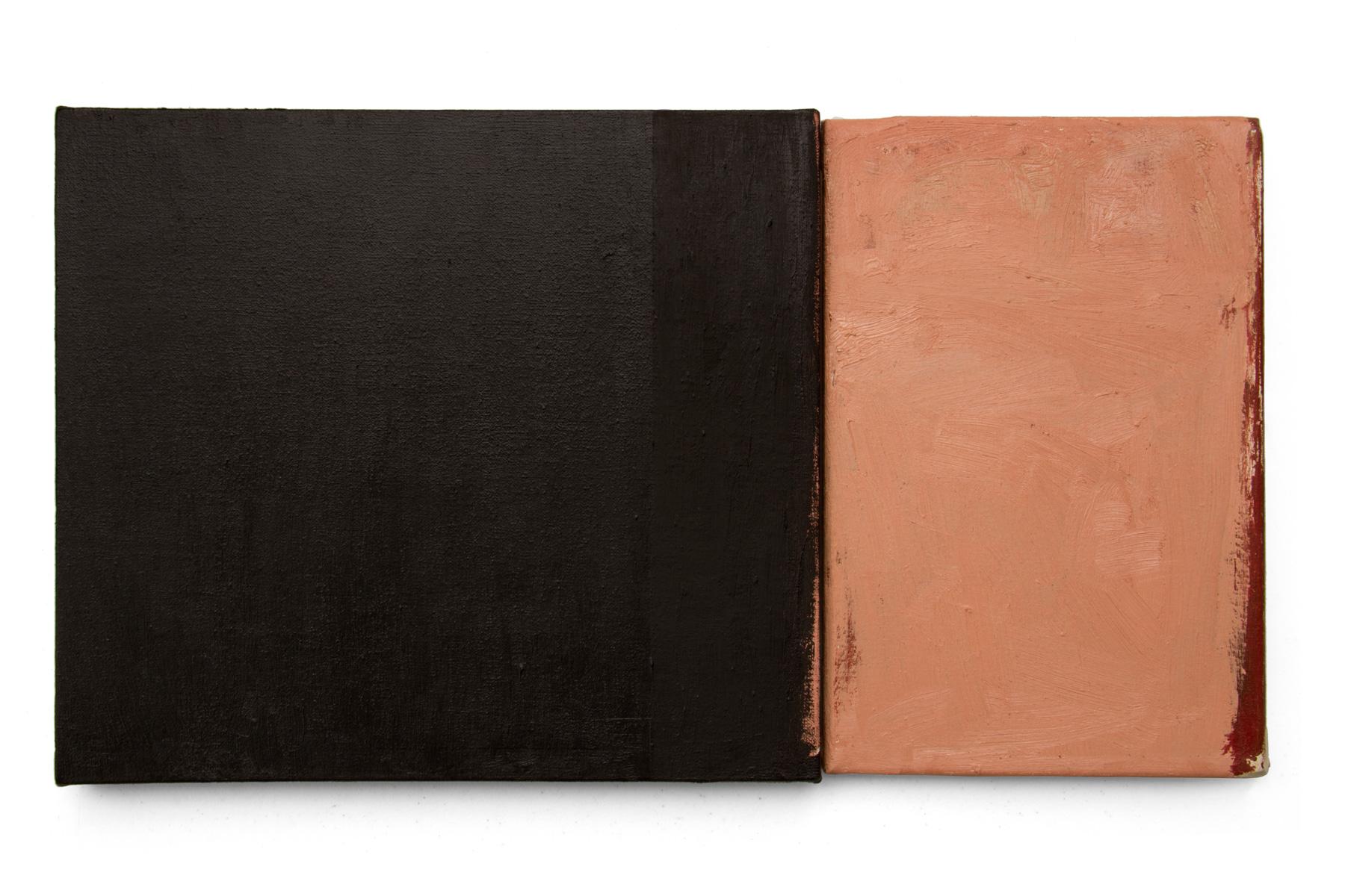 Dialogo 10, oleo sobre lienzo, 30 x 55cms