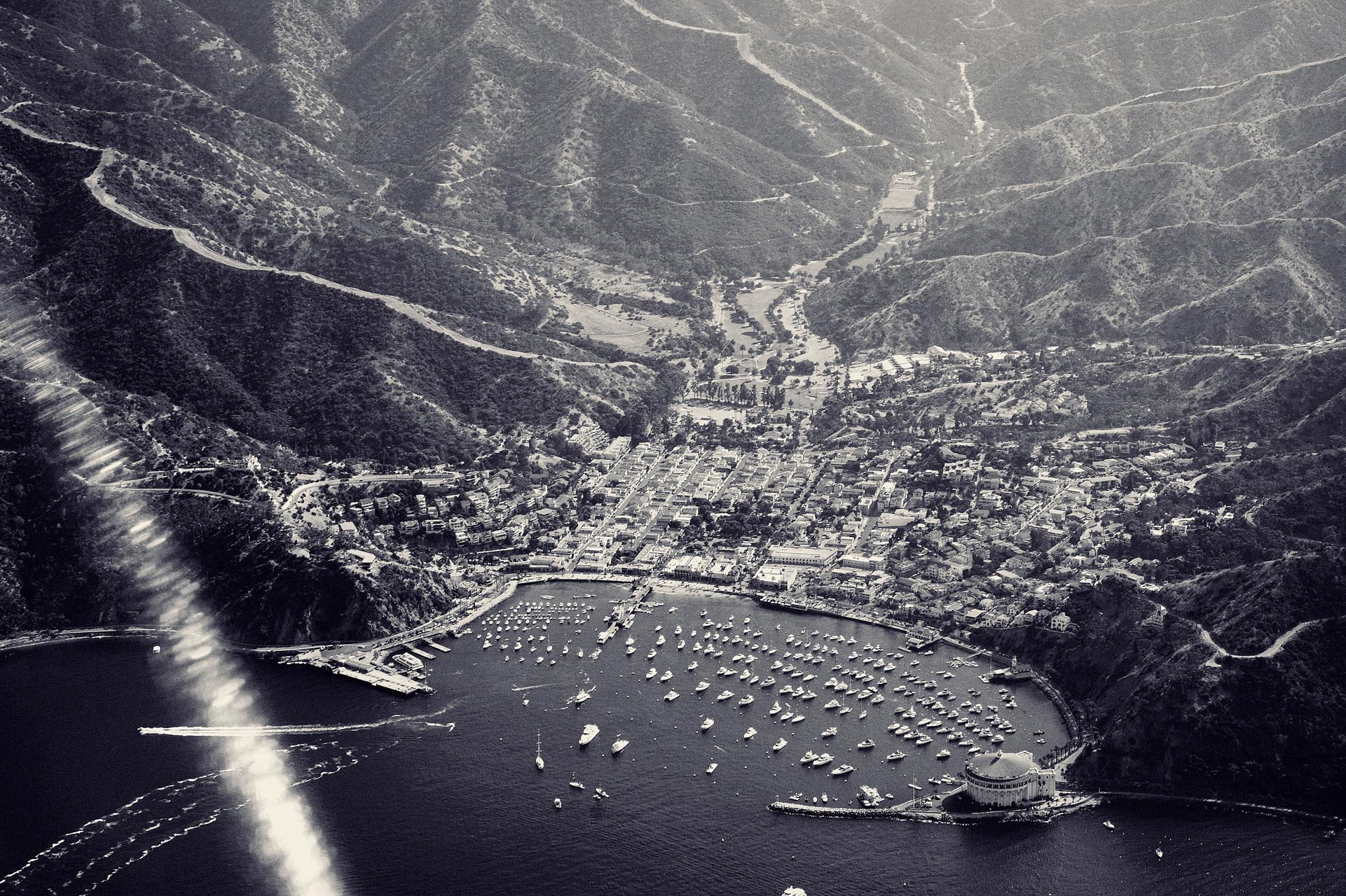 CatalinaIsland_PhillipAngert - 15.jpg