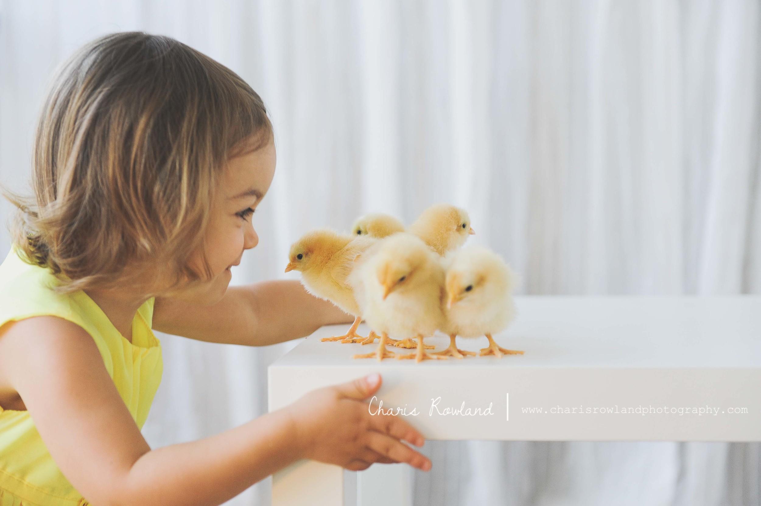 girls-chicks-29.jpg