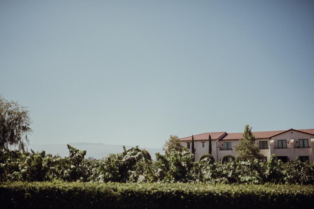 Temecula-Wedding-Ponte-Winery-3.jpg