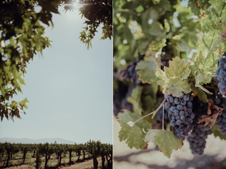 Romantic-Temecula-Wedding-Ponte-Winery_1570.jpg