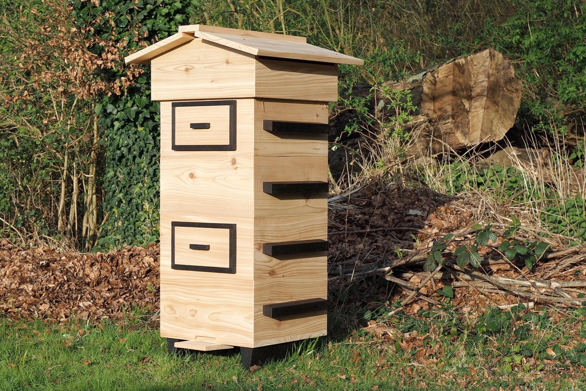 Beehive+woodland+cedar+oak+trees+bees.jpg