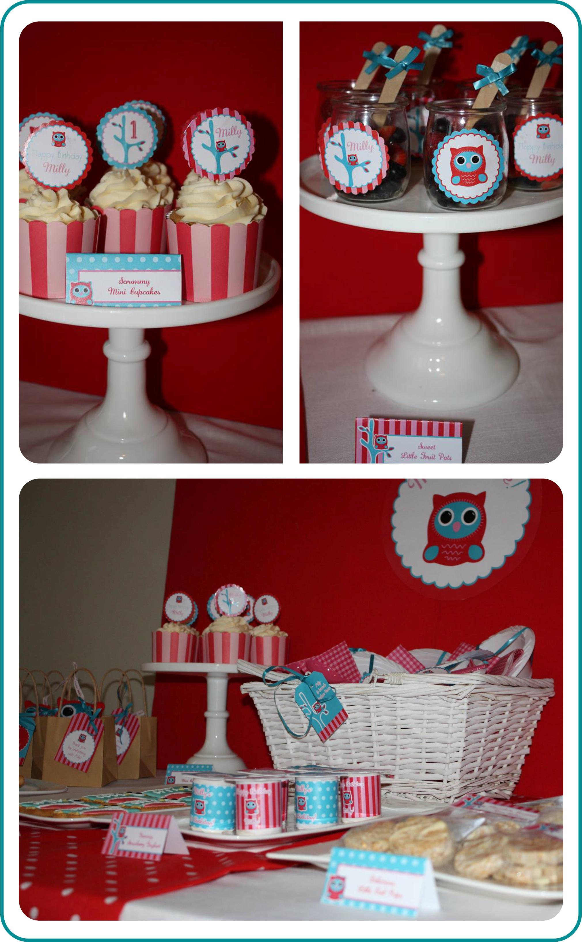 Owl Party Decor Ideas.jpg