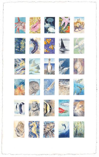 Sea Life 21 x 13 watercolor