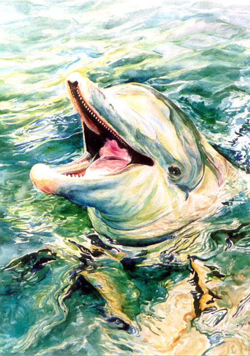 The Happy Green Dolphin 29 x 18