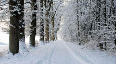 winter-walk.jpg