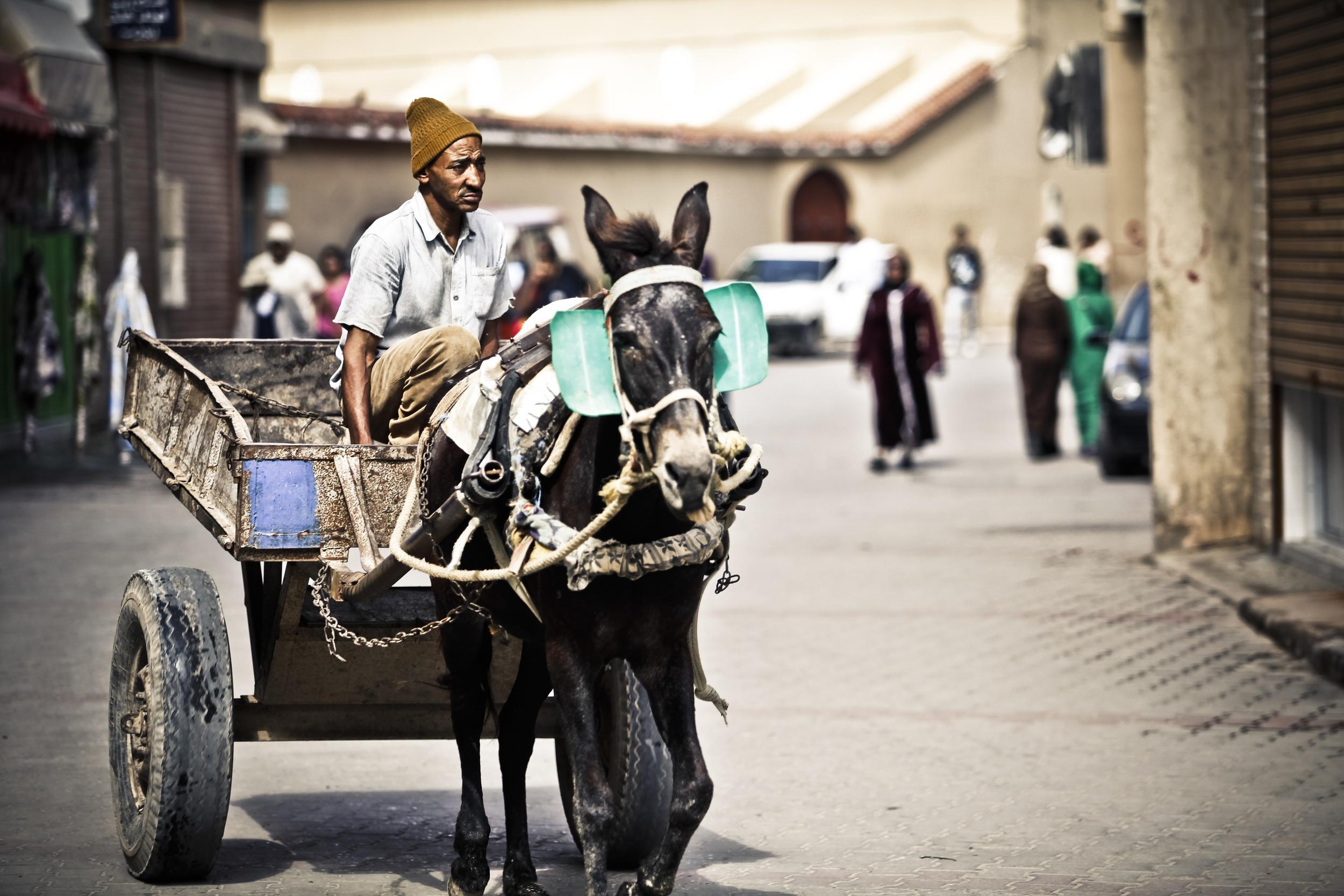 marokko-11.jpg