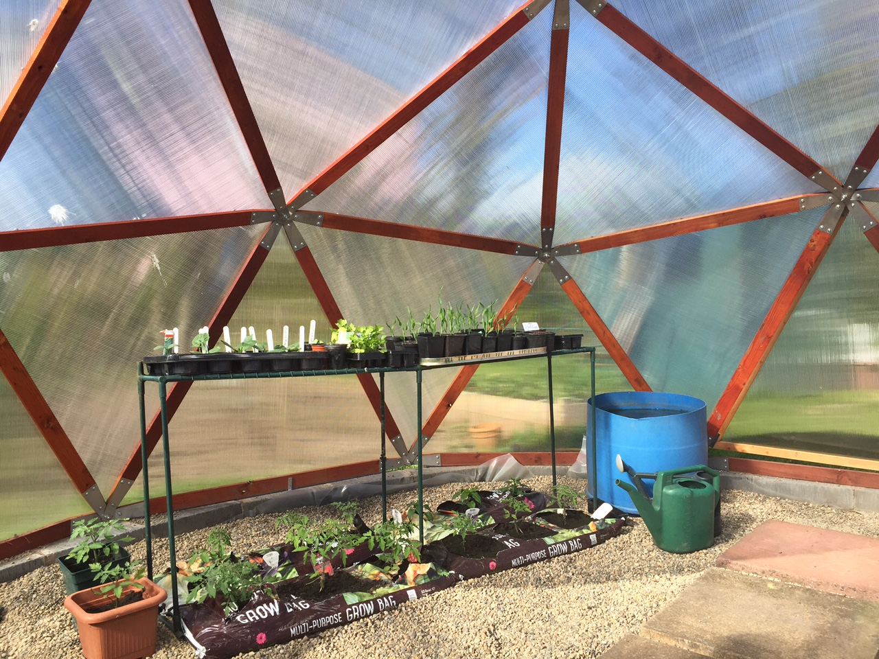 Finished. The melon, sweetcorn and cucumber plants have started to race away and its tropical temperatures in the dome.