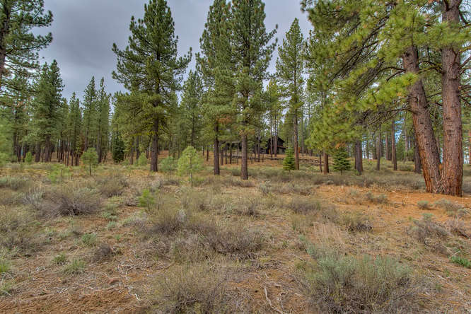 7445 Lahontan Dr Truckee CA-small-010-Looking Back toward Front of-666x444-72dpi.jpg