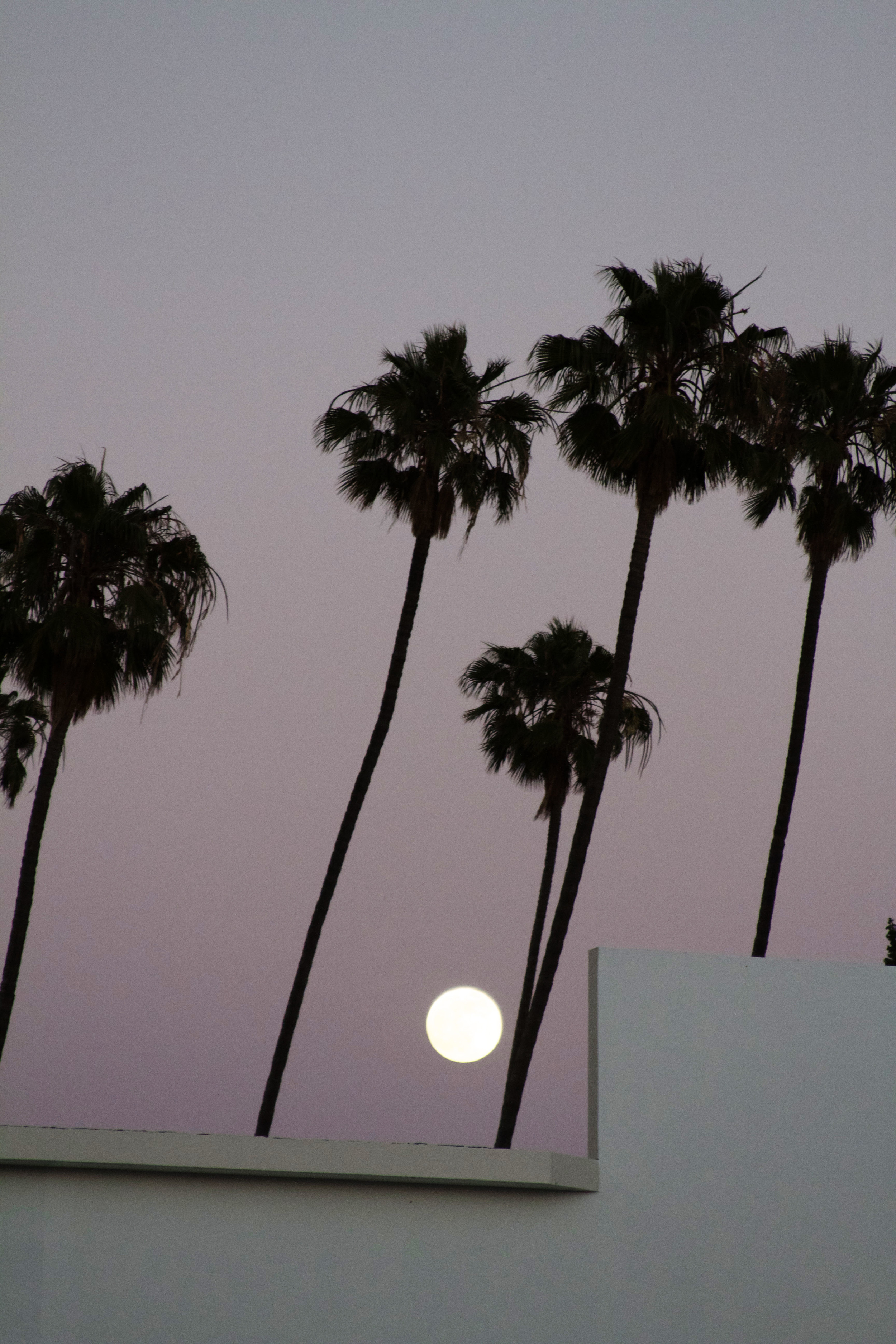 super moon light.jpg