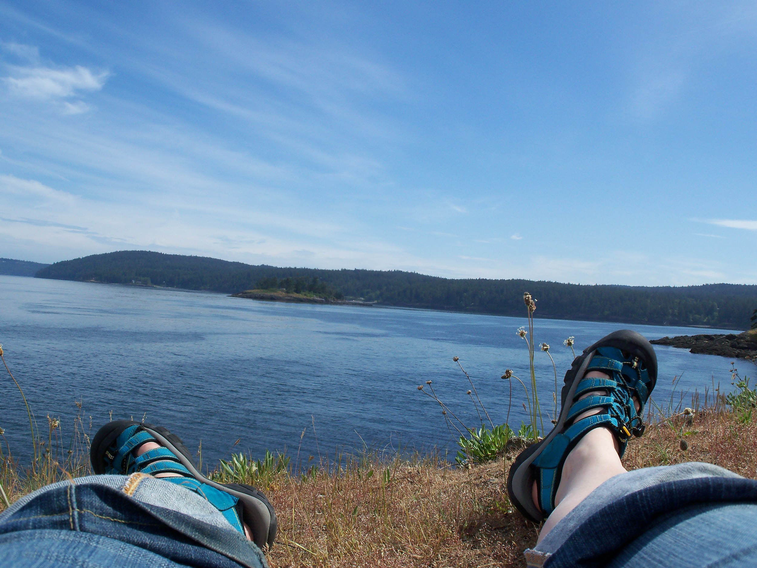 Contemplating ecology, San Juan Island, 2010