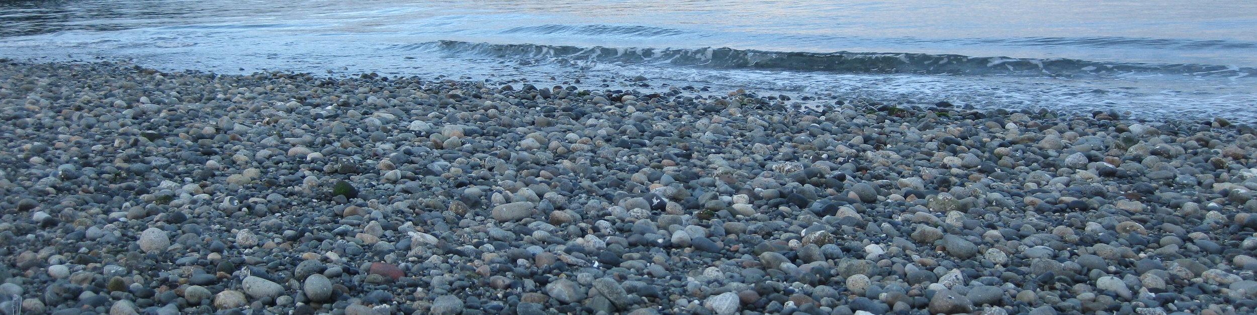 Puget Sound beach, Washington