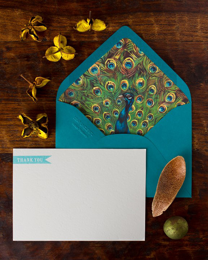 peacock-lined-stationery.jpeg