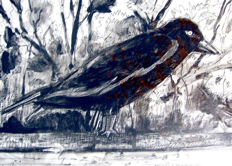 bird 1.png