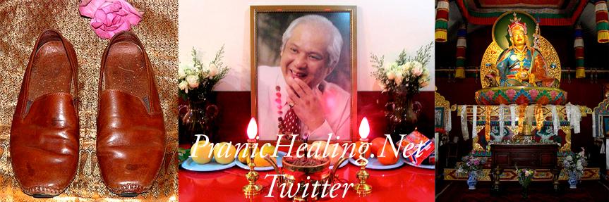 Pranic_Healing_Net_Twitter.jpg