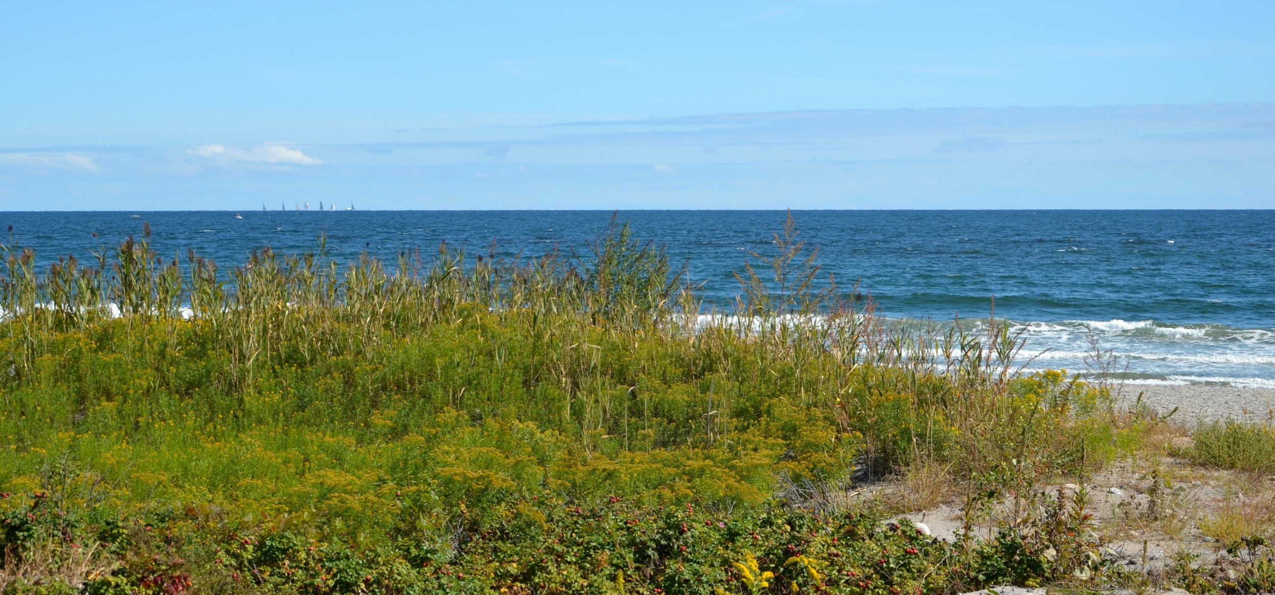 RaeChild_Narragansett_Beach