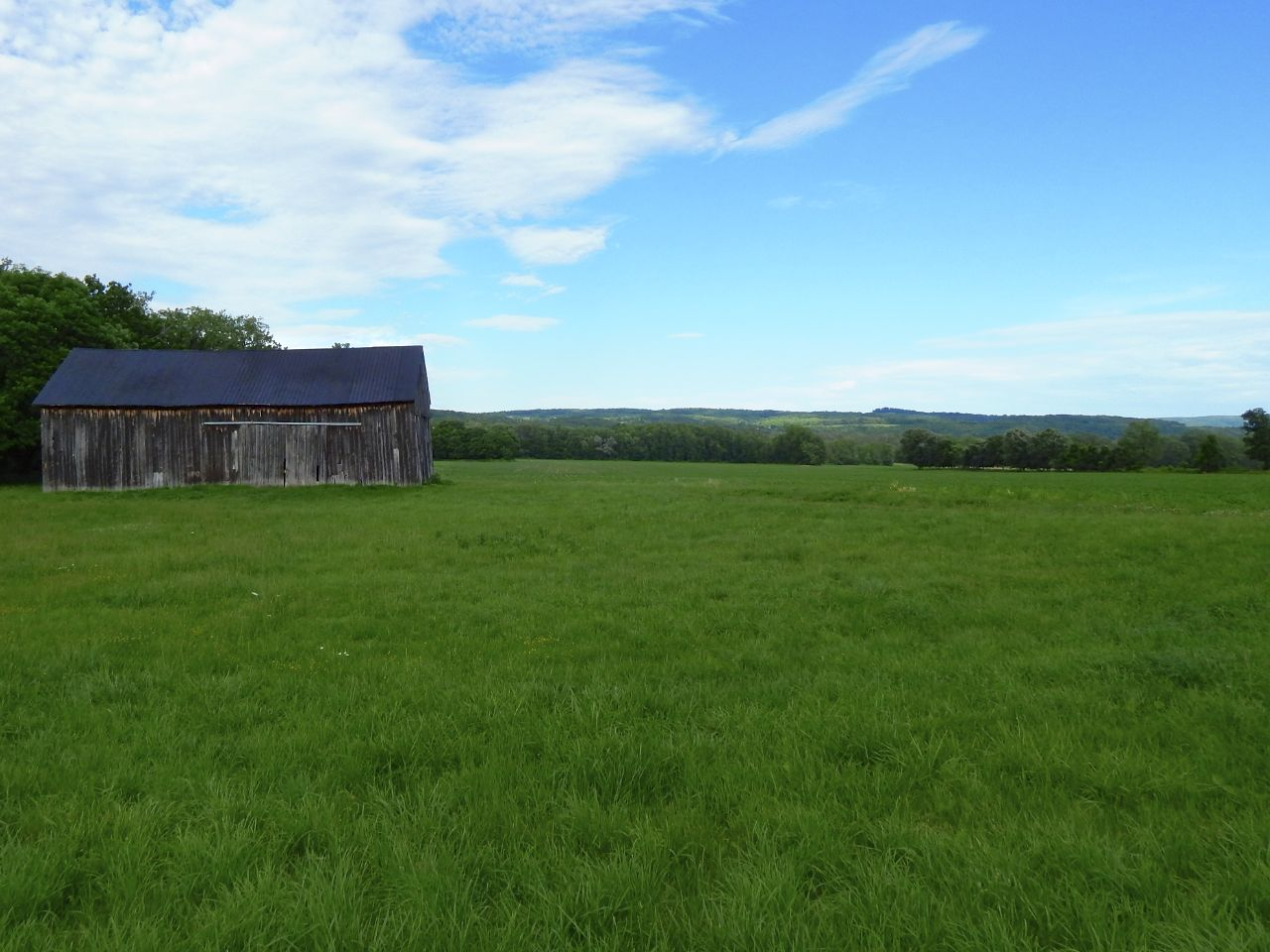 Barn in Field.jpg