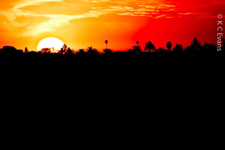 SunsetLA2.jpg