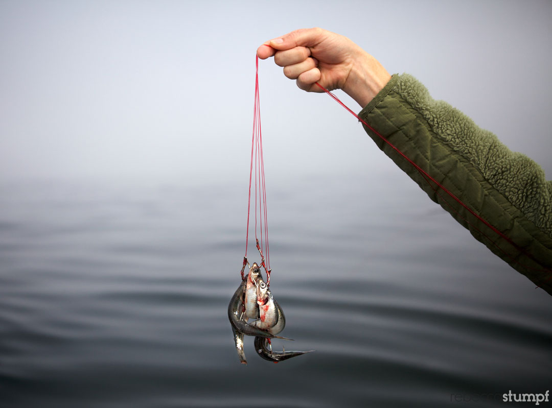 rebeccastumpf_fishing 16e.jpg