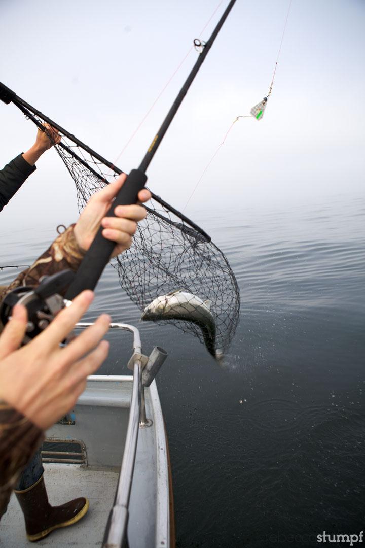 rebeccastumpf_fishing 13e.jpg