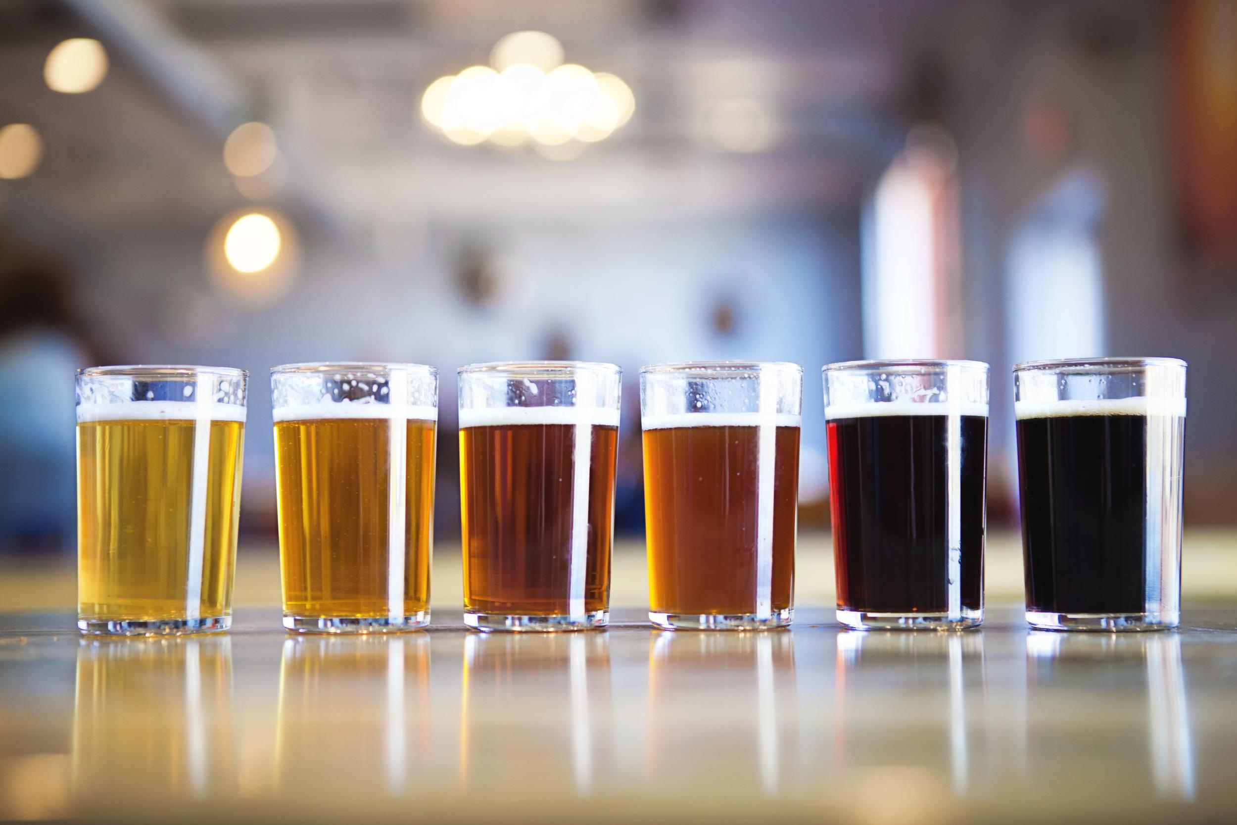 300 Suns Brewery, Longmont, Colorado