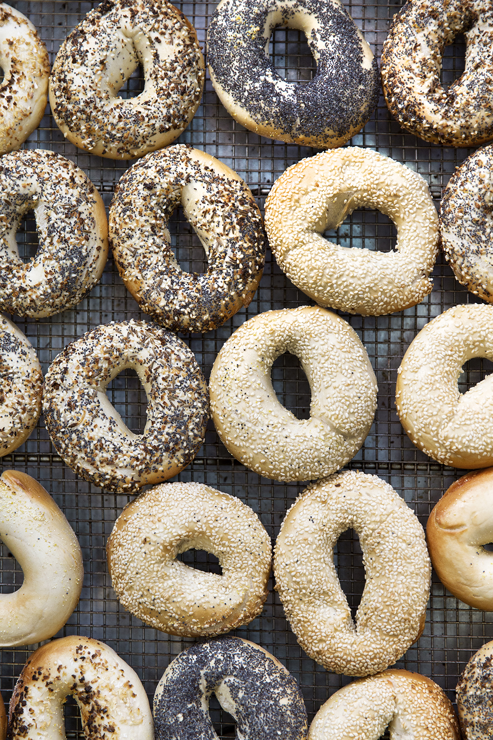 rstumpf_villagebagel