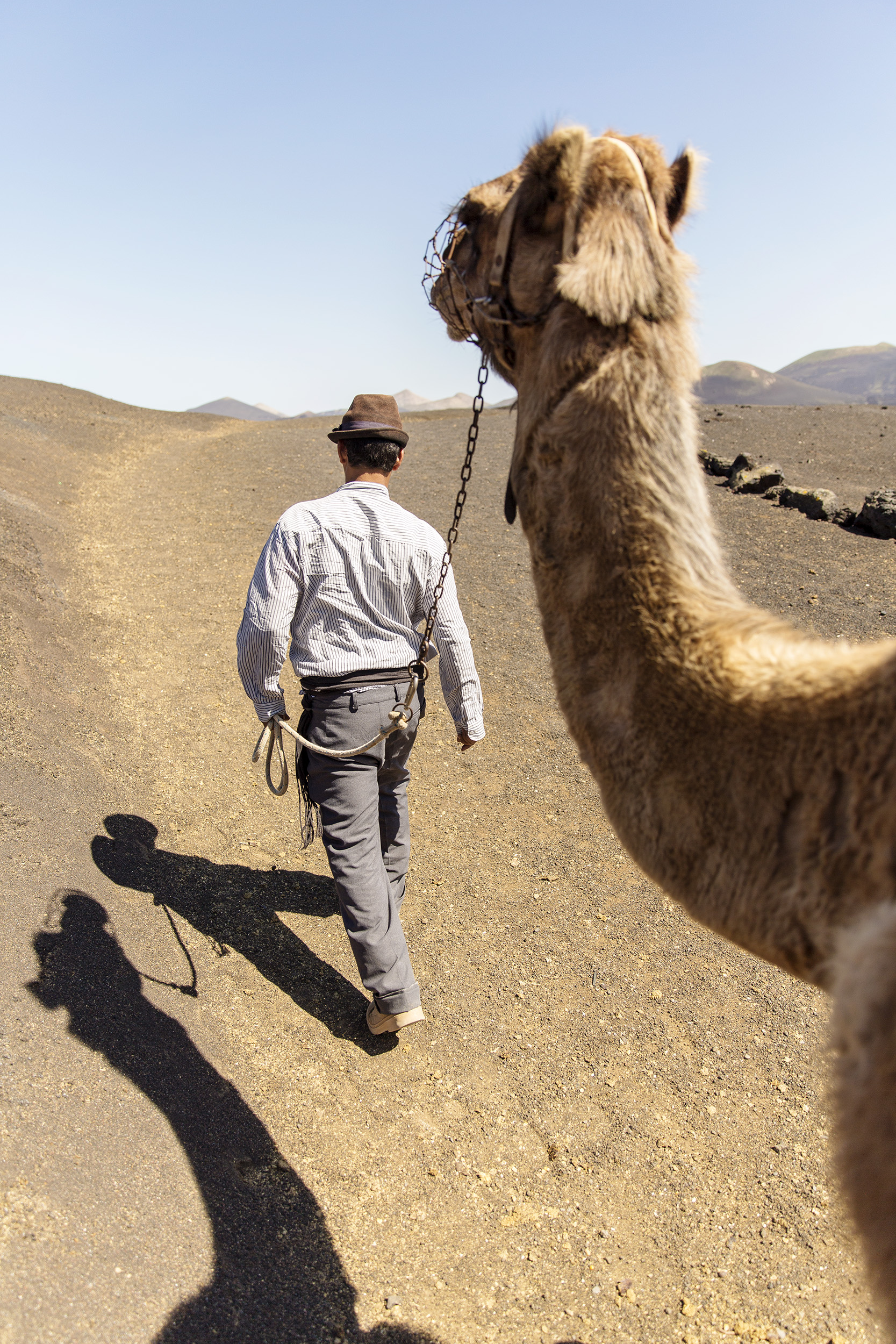 A man walks his camel in Timanfaya National Park in the Canary Islands by Rebecca Stumpf, Denver Boulder Colorado Editorial and Commercial Photographer.