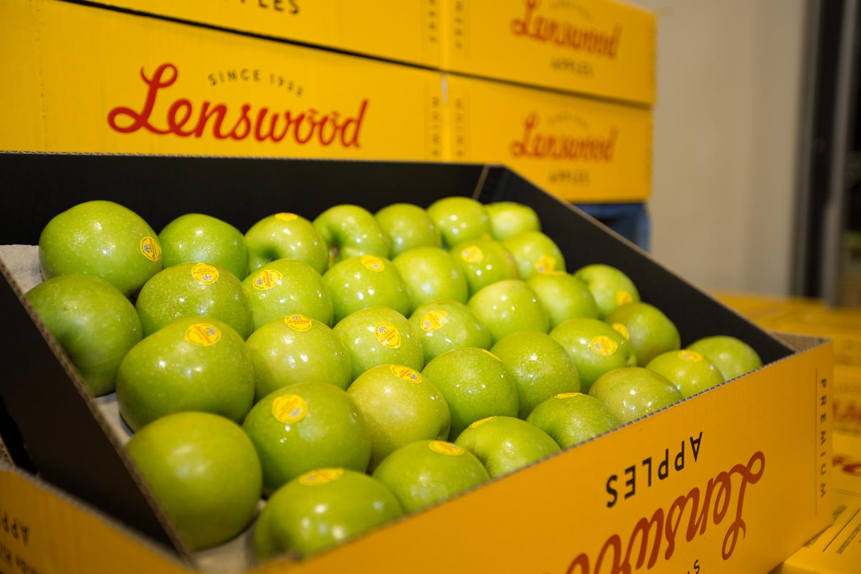 53-Lenswood-Apples-1960.jpg