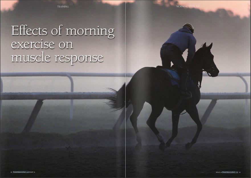 Horse_Exercise.jpg