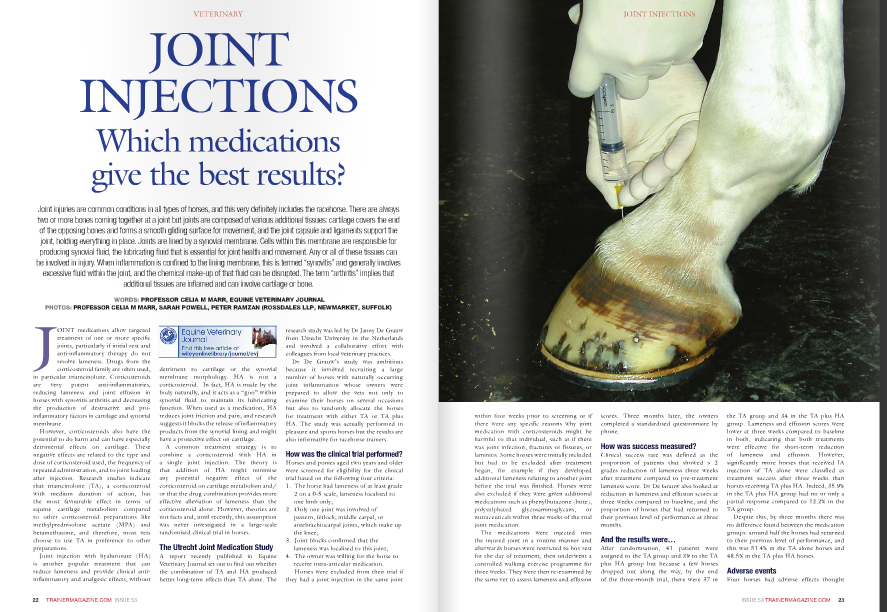 """J OINT medications allow targeted treatment of one or more specific joints, particularly if initial rest and anti-inflammatory therapy do not resolve lameness. Drugs from the corticosteroid family are often used, in particular triamcinolone. Corticosteroids are very potent anti-inflammatories, reducing lameness and joint effusion in horses with synovitis arthritis and decreasing the production of destructive and proinflammatory factors in cartilage and synovial membrane. However, corticosteroids also have the potential to do harm and can have especially detrimental effects on cartilage. These negative effects are related to the type and dose of corticosteroid used, the frequency of repeated administration, and to joint loading after injection. Research studies indicate that triamcinolone (TA), a corticosteroid with medium duration of action, has the most favourable effect in terms of equine cartilage metabolism compared to other corticosteroid preparations like methylprednisolone acetate (MPA) and betamethasone, and therefore, most vets choose to use TA in preference to other preparations. Joint injection with hyaluronate (HA) is another popular treatment that can reduce lameness and provide clinical antiinflammatory and analgesic effects, without detriment to cartilage or the synovial membrane morphology. HA is not a corticosteroid. In fact, HA is made by the body naturally, and it acts as a """"goo"""" within synovial fluid to maintain its lubricating function. When used as a medication, HA reduces joint friction and pain, and research suggests it blocks the release of inflammatory products from the synovial lining and might have a protective effect on cartilage. A common treatment strategy is to combine a corticosteroid with HA in a single joint injection. The theory is that addition of HA might minimise any potential negative effect of the corticosteroid on cartilage metabolism and/ or that the drug combination provides more effective alleviation of lameness than the """