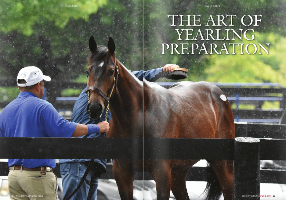 """When we walk onto the sales grounds for a yearling auction conducted by Fasig-Tipton or Keeneland, buyers and breeders rest assured in the knowledge that some of the best Thoroughbreds in the world are available for purchase. The breeders have produced the horses for whom they have high hopes, and buyers will select the ones they believe will fulfill the hopes of each crop of Thoroughbreds by winning major stakes, earning championships, and retiring in glory after a few years to become breeding stock for the next generation. Getting those promising yearlings to the sales in the condition best suited to attract buyers and likewise promote that young animal's progress into a top racing athlete is a fine balance. WORDS: FRANK MITCHELL PHOTOS: FRANCES J. KARON, HORSEPHOTOS, CRESTWOOD FARM, GAINESWAy NOT too many decades ago, especially before the 1970s, sales prep was a mostly homegrown, rather relaxed affair. Many yearlings spent their time grazing under the heat of the summer sun and came to the sales with little more than a light trim of their feet, mane, and tail. Lee Eaton, more than any other consignor or horseman, was responsible for the changes in the management of yearlings and evolution of sales prep into what we have today. Neil Howard, now farm manager of Gainesway Farm outside Lexington, recalled that the """"program I went into in 1976, basically as the general manager of the farm for Lee Eaton,"""" was one designed to systematically make every yearling as attractive as its natural qualities allowed. Howard said, """"Lee saw a need for someone to sell for other people, and with that came responsibilities and expectations. To provide a consigning and prepping service, you had to have a plan. Lee was a very meticulous person; he would send out letters to clients about how to prep each horse, telling everybody what should be done and when it should be done. That way, the yearlings would all come in to the sales grounds looking the same. """"For instance, he instructed pe"""