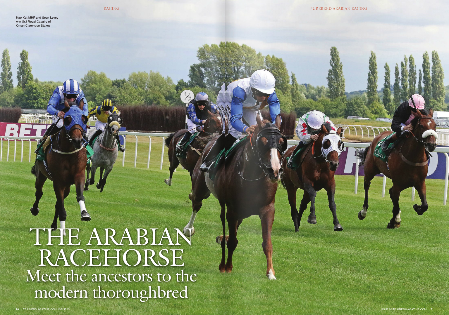 """N all countries other than the United Kingdom, Arabians can be trained alongside thoroughbreds by licensed racehorse trainers, who are increasingly recognising the Arabian as an additional income, providing fresh trading opportunities and attracting new owners. In France, for example, successful Arabian trainers usually better known for their thoroughbreds include Francois Rohaut, Damien de Watrigant, Philippe Sogorb, and Francis-Henri Graffard, who each feature in the top 20 leading Arabian trainers by prize money. It is unfortunate that UK thoroughbred trainers are being excluded, but it is something the British Horseracing Authority (BHA) and the Arabian Racing Organisation of the UK (ARO) are aware of and on which they are working RACING Purebred Arabian horseracing is held throughout the world under the regulatory authority of each country's horseracing administrative body in conjunction with the national Arabian horseracing organisation, the International Federation of Arabian Horse Racing Authorities (IFAHR). Therefore, in most cases, the administration and regulation of the sport are therefore little different to the thoroughbred industry. WORDS: LISSA OLIVER PHOTOS: ILkA GAnSERA LéVêquE, DEbbIE buRT – EquInE CREATIVE MEDIA 72 TRAINERMAGAZINE.COM ISSUE 55 since 2001, but what may come as a surprise to many is that Arabian racing has taken place in Britain since 1978. The Maktoum family had a vision to put Arabian racing on a par with the thoroughbred industry, with HH Sheikh Hamdan Bin Rashid Al Maktoum being the patron of ARO. With this aim in mind, ARO has progressed considerably, having been set up as an amateur not-for-profit administrative body, and remains predominantly amateur at the moment, though Genny Haynes, director of ARO, stresses """"at the moment."""" """"We have 36 national trainers and a total of 175 Purebred Arabians, which includes international runners, so it's a very small population,"""" Haynes points out. """"It would be very sad to lose the amateur"""