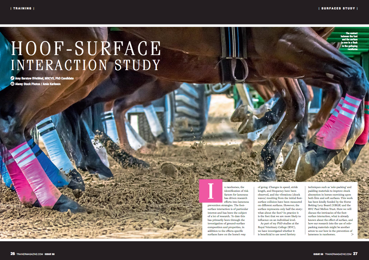 In racehorses, the identification of risk factors for lameness has driven research efforts into lameness prevention strategies. The foot-surface interaction is of particular interest and has been the subject of a lot of research. To date this has primarily been through the investigation of ground-surface composition and properties, in addition to the effects specific surfaces have on the horse's way of going. Changes in speed, stride length, and frequency have been observed, and the vibrations (shock waves) resulting from the initial foot-surface collision have been measured on different surfaces. However, the surface represents only half the story: what about the foot? In practice it is the foot that we are more likely to influence on an individual level.    As part of my PhD studies at the Royal Veterinary College (RVC), we have investigated whether it is beneficial to use novel farriery techniques such as 'sole-packing' and padding materials to improve shock absorption in horses exercising upon both firm and soft surfaces. This work has been kindly funded by the Horse Betting Levy Board (HBLB) and the RVC Paul Mellon Trust. Here we will discuss the intricacies of the foot-surface interaction, what is already known about the effect of surface, and how our research into the use of sole-packing materials might be another arrow to our bow in the prevention of lameness in racehorses.    What is the foot-surface interaction?    The contact between the foot and the surface is over in a flash in the galloping racehorse (or even one trotting slowly, for that matter). However, foot contact may be broken up into four key stages to help us understand and describe the effects different surfaces and farriery techniques have.    Stage 1 – Primary impact. The foot has just hit the ground, is sliding forwards along the surface and decelerating. Vibrations are at their largest and fastest at this stage but the force the leg experiences is low because it is not yet supporting the h