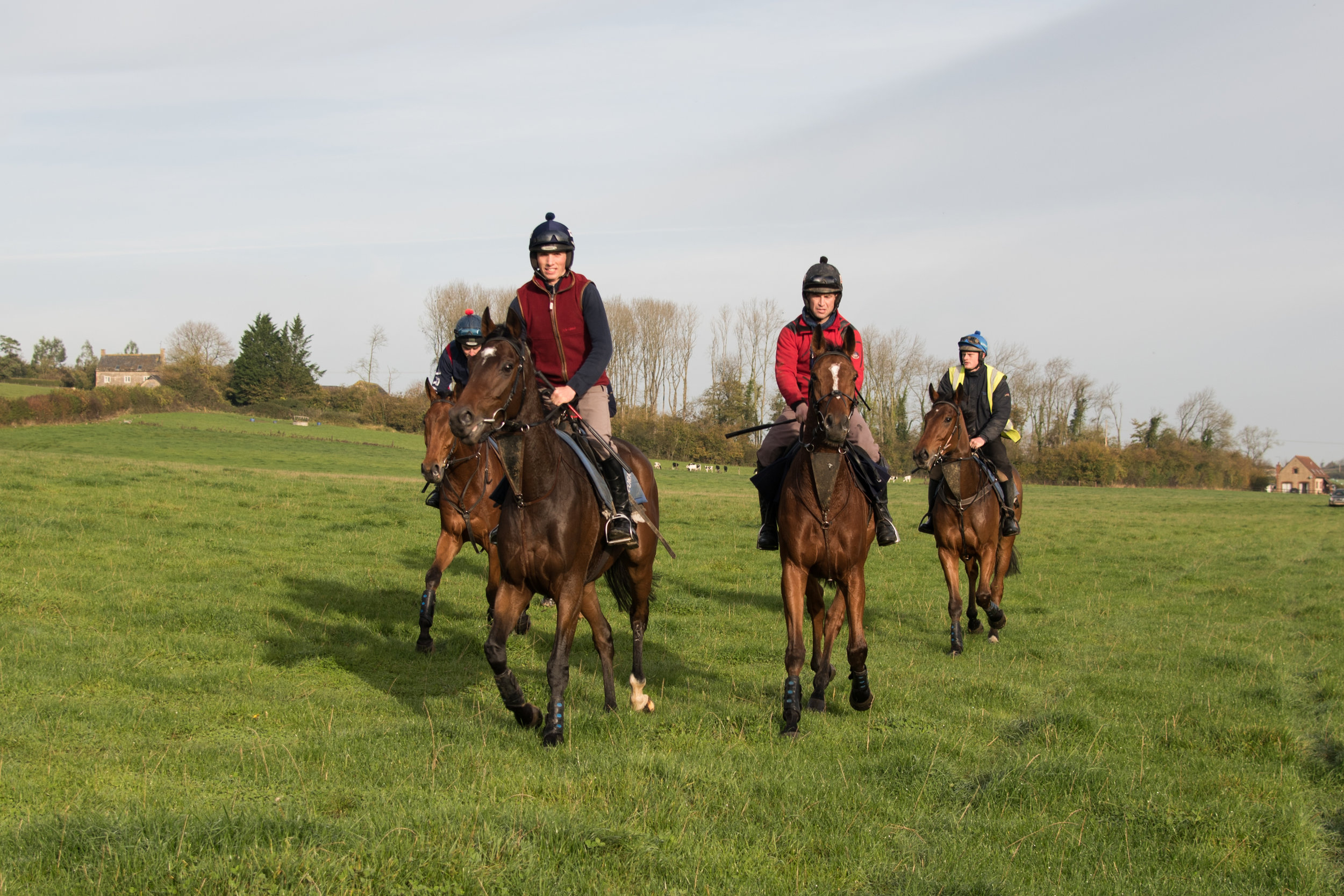 Looking to the future: Tizzard holds the new recruits to his string in high regard