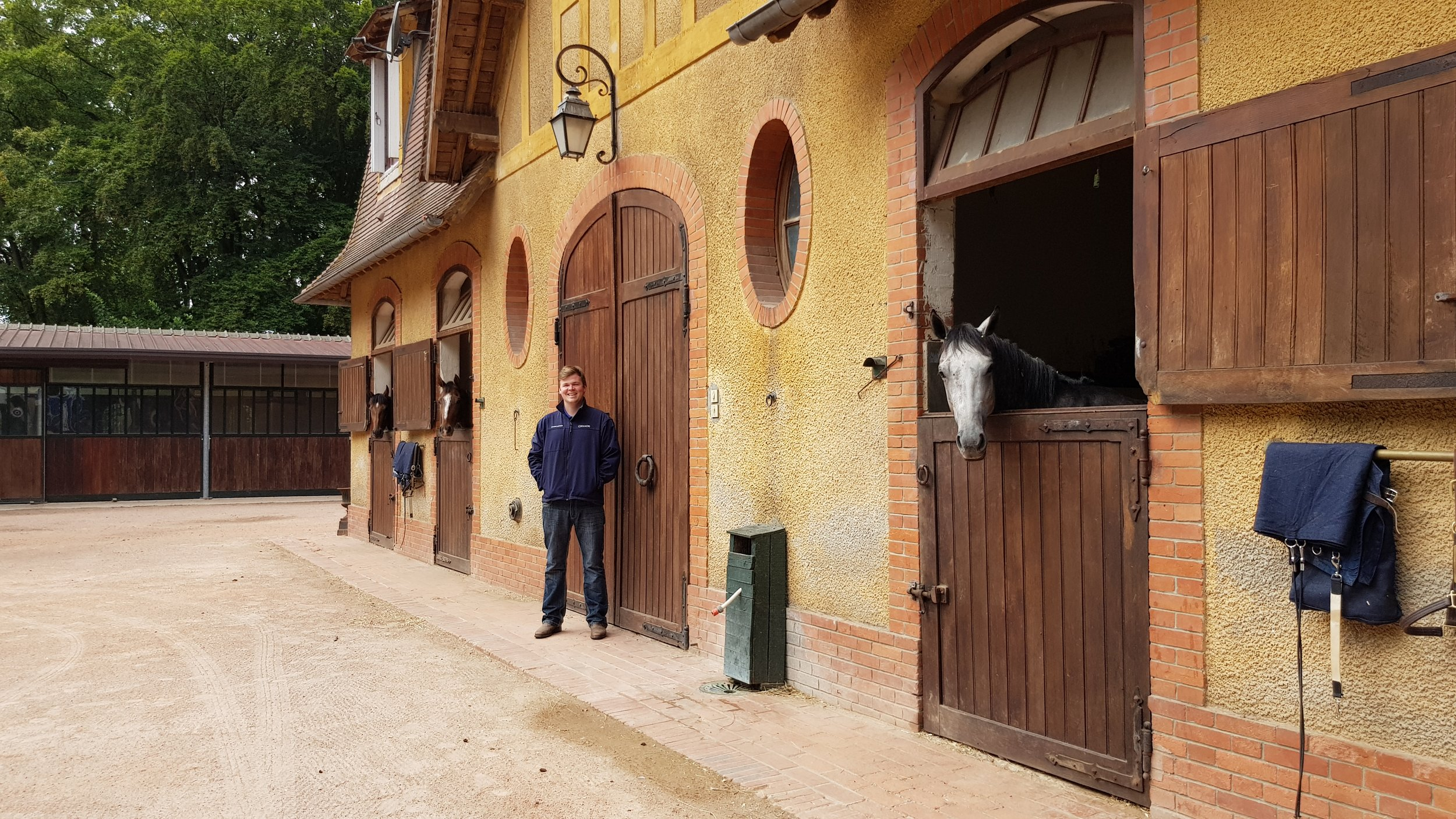 Starting out - the latest update from new trainer - Gavin Hernon      Saturday 18th August 2018, a dream start and a day that will live very long in the memory.     To win a Deauville maiden, an hour before the hammer starts to fall on some of the best-bred yearlings in Europe would be a special moment for most trainers. I still need to pinch myself to be sure I'm not in a dream to have won the Prix Des Etalons Shadwell with my first runner.     Icefinger is a horse we have always thought might have a touch of class. We had given him Group entries before his race but we might opt for a Listed race to allow him grow up. His very relaxed manner at home just meant that it took him a bit of time to come to hand. Despite our belief in him, I never thought he would be able to beat nice horses who had experience in regarded maidens at the first time of asking. That day was a nice way to culminate the start-up phase of our yard.     I firmly believe that the authorization and licensing process in France is the best grounding one can get. That said, it still doesn't quite prepare me for what comes next. Establishing a company in France and getting all the necessary paperwork in place isn't the most straightforward and this is probably an area where France lags behind other neighbouring countries. Admittedly, through August most of Europe takes the month as a holiday which adds to the timeline to do anything. It probably doesn't help that I'm wired to prefer spending time outside with the horses.     I am fortunate that I have an excellent accounting firm in Equicer guiding me through everything step by step and now we're fully set up and running. Even my bank account got held up in the bureaucracy so I'm grateful to my suppliers for their patience.     I feel it is necessary to say that Olivier Delloye of France Galop is an exception and his help throughout has been nothing short of phenomenal given his busy schedule and without him, Icefinger probably would not have been ab